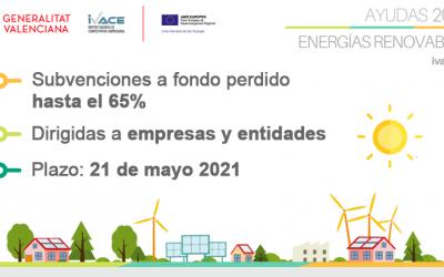 PROGRAMA DE ENERGÍAS RENOVABLES Y BIOCARBURANTES 2021